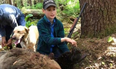 11-Year-Old Boy Saves Family by Killing Charging Brown Bear with Shotgun