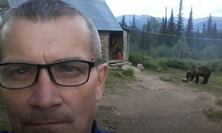 25 Children Trapped By a Bear in Remote Siberian Summer Camp, Officials Unsure What to Do