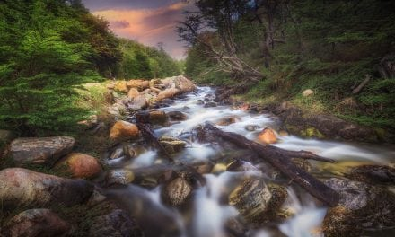 Brooks, Streams & Rivers Assignment Winner Luiz Carlos Junior