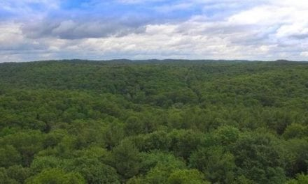 For $1.7 Million, You Could've Had an Abandoned Ohio Girl Scout Camp as a Hunter's Paradise
