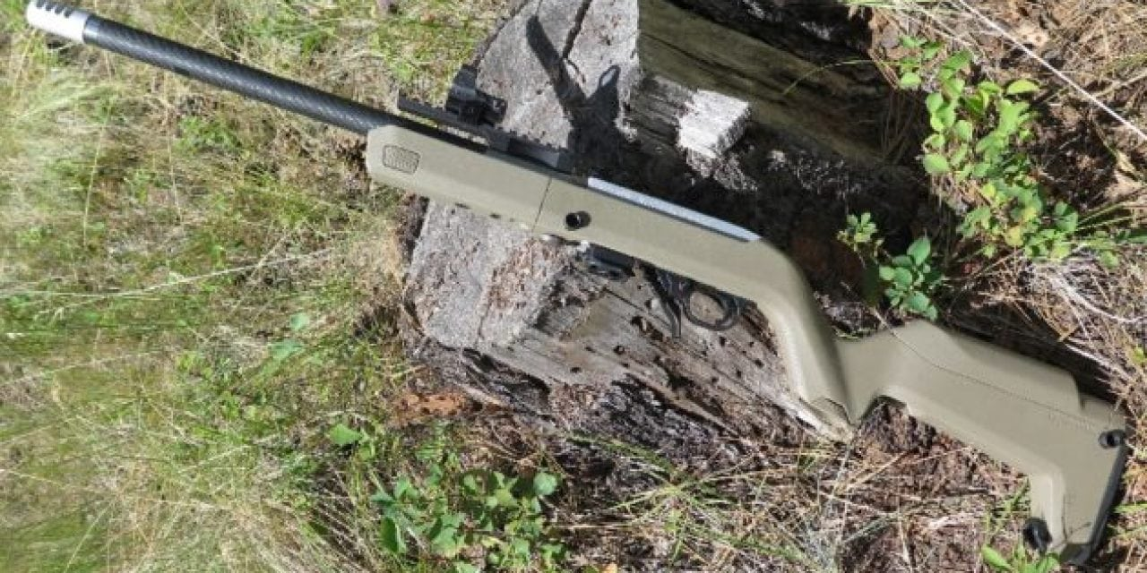 Here Are 5 of Our Favorite Ruger 10/22 Accessories