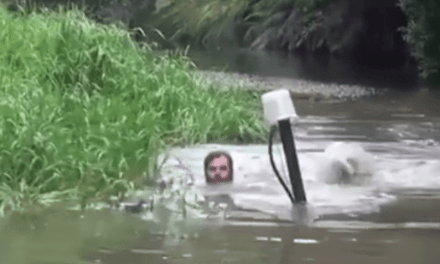 Is This Guy Riding a Submarine to the Duck Blind?