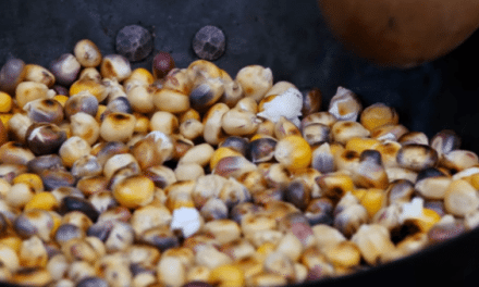 Parched Corn: 18th Century Survival Superfood That You Can Carry With You Into the Wild