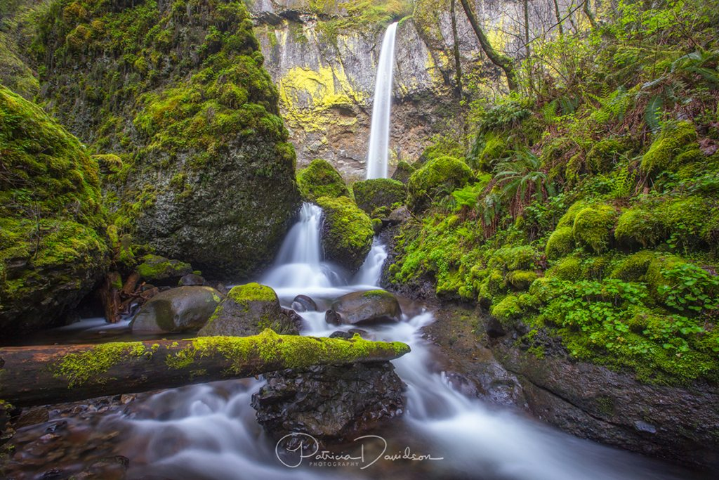 """Today's Photo Of The Day is """"Elowah Falls"""" by Patricia Davidson. Location: Columbia River Gorge National Scenic Area, Oregon."""