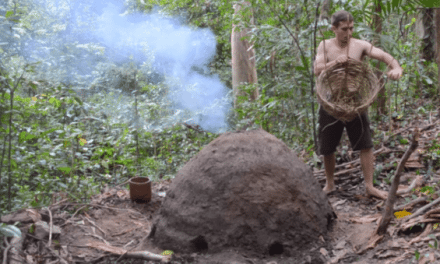 Primitive Technology: He Made a Reusable Charcoal Kiln from Mud