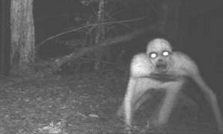 The 9 Scariest Game Camera Pictures of All Time