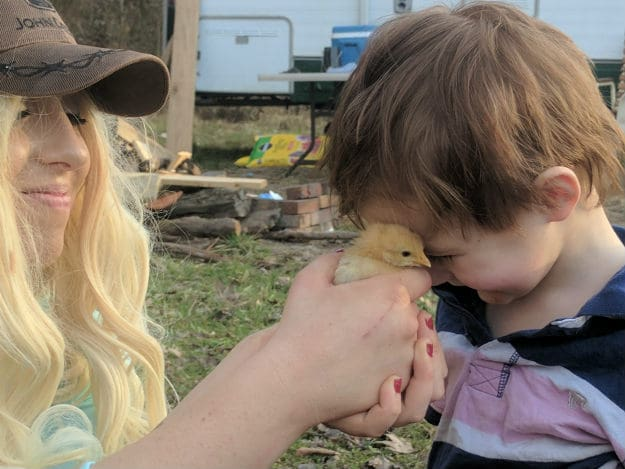 Top 10 Natural Remedies for Chicken and Duck Keeping mom holding chick to kid's face