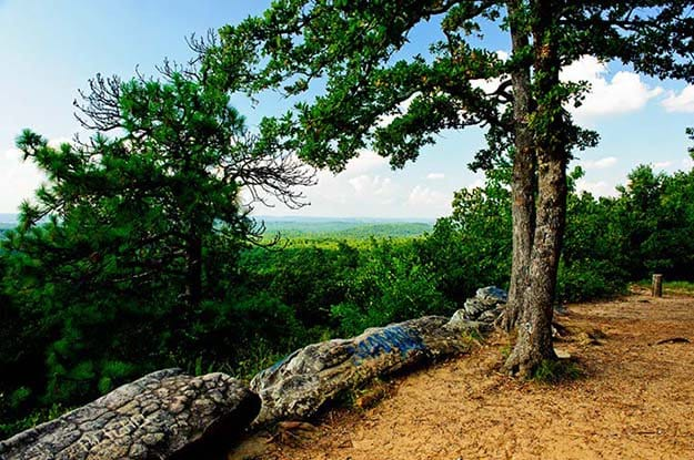 Camping in Alabama   Ultimate List of Campgrounds Around US   Survival Life Camping Spots List