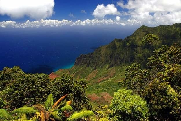 Camping in Hawaii   Ultimate List of Campgrounds Around US   Survival Life Camping Spots List