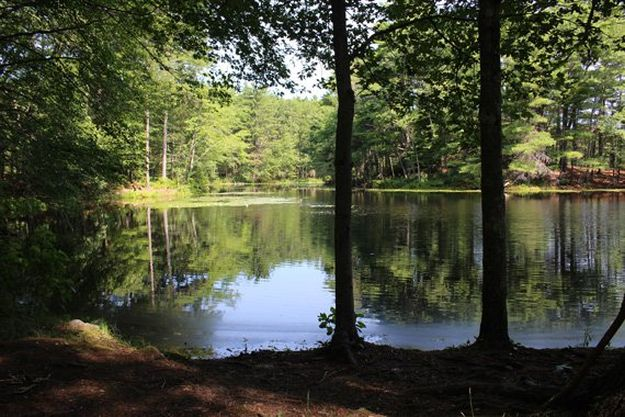 Camping in Massachusetts   Ultimate List of Campgrounds Around US   Survival Life Camping Spots List