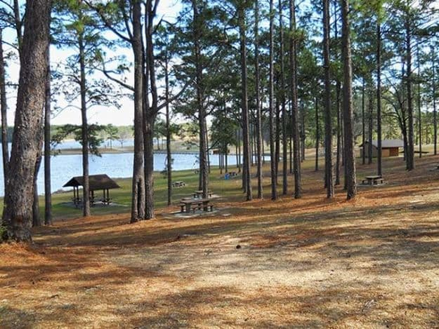 Camping in Mississippi   Ultimate List of Campgrounds Around US   Survival Life Camping Spots List