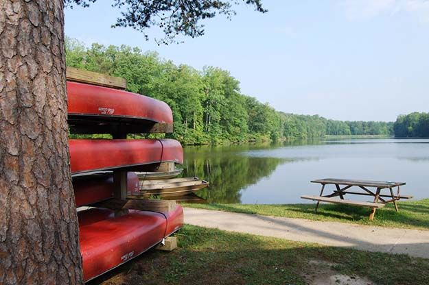 Camping in Virginia   Ultimate List of Campgrounds Around US   Survival Life Camping Spots List