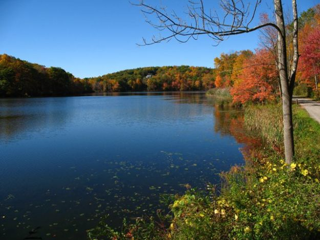 Camping in Connecticut   Ultimate List of Campgrounds Around US   Survival Life Camping Spots List