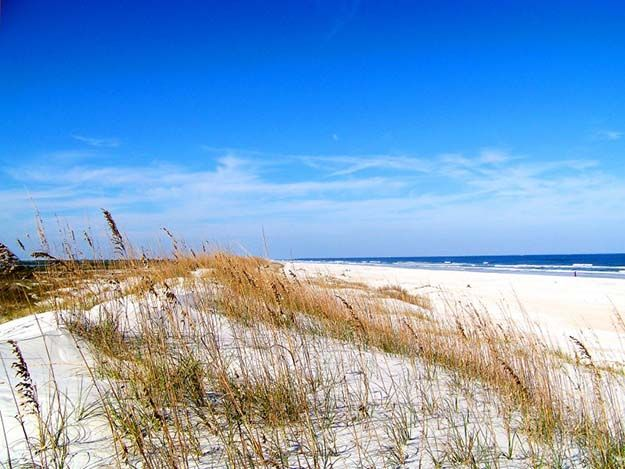 Camping in Florida   Ultimate List of Campgrounds Around US   Survival Life Camping Spots List