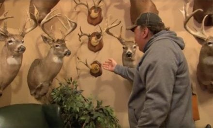 #WhitetailWednesday: The Rest of This Whitetail Room Will Make Your Heart Skip a Beat