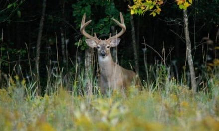 11 Ways Hunters Are Basically Losing Their Minds as Deer Season Gets Closer
