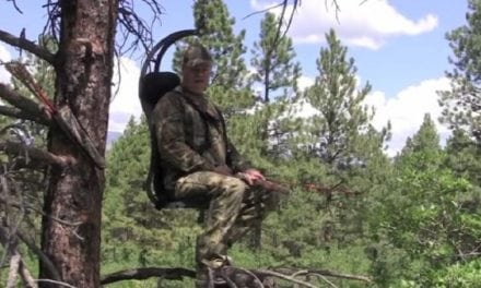 A Different Way to Hunt: The 'Hung Right' Hunter Chair