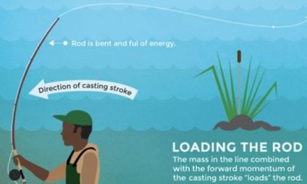 Fly Casting Infographic Offers Super Useful Pointers for Casting Excellence