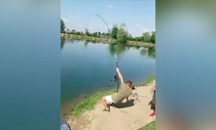 Foul Hooked Sturgeon Takes Double-Team to Land
