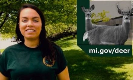 Here's Michigan's Early Antlerless Deer Season Explained Quickly and Easily