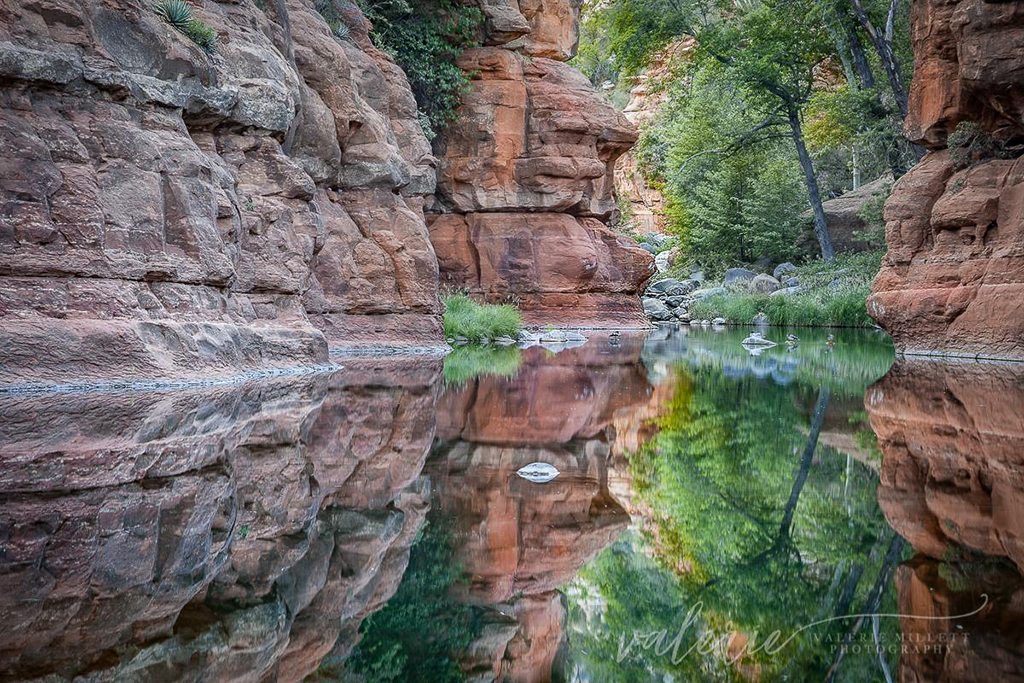 """Today's Photo Of The Day is """"Oak Creek Canyon"""" by Valerie Millett. Location: Arizona."""