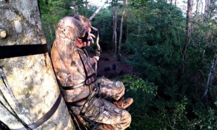 Pigman Smokes Jumbo Hog From Sky High in Treestand