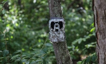 Trail Camera Review: Exodus Lift Mark II