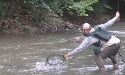 VIDEO: Fishing Muddy Water Can Land You a Lunker