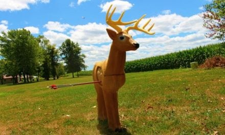 Want to Spice Up Your Archery Practice? Check Out This Rinehart Woodland Buck Target