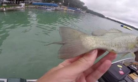 Watch: Jon B. Went Fishing in Michigan and Caught Some Really Weird Bass