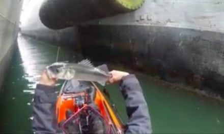 Would You Fish Between Massive Ships in Your Kayak? This Guy Does