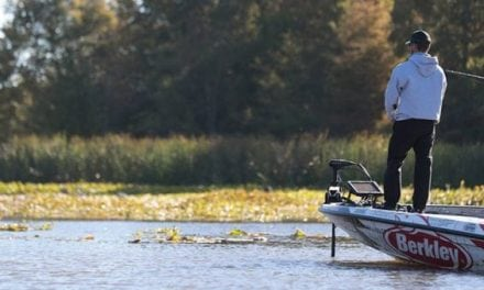 4 Berkley Rods You Might Not Even Know About (But Should)