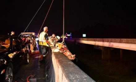 A Driver Hammered a Deer on a Bridge, and Then Tumbled Off Himself