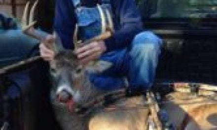 Buck Fever Not a Problem for Old School Deer Hunter