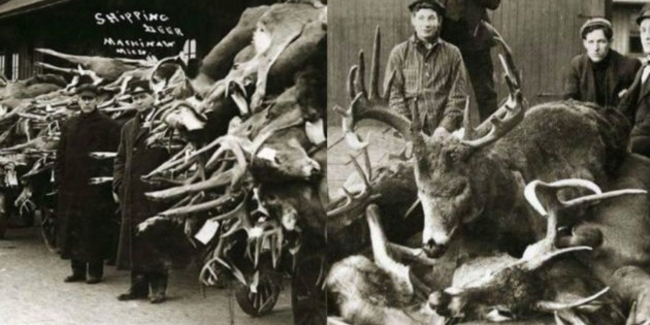 Check Out These 25 Awesome Vintage Deer Hunting Photos for #WhitetailWednesday