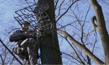 From Ground to Seated in Tree from Your Lone Wolf Treestand in Just 7 Minutes