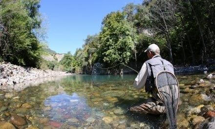 Go High and Fast for Fall Trout Fishing