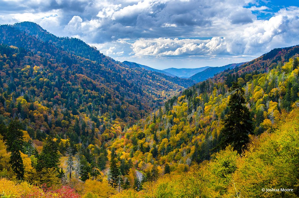 "Today's Photo Of The Day is ""Autumn from Morton"" by Joshua Moore. Location: Morton Overlook, Great Smoky Mountains National Park, Tennessee."