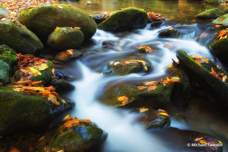 "Today's Photo Of The Day is ""Stream In Autumn"" by Michael Swindle. Great Smoky Mountain National Park, TN."