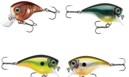 RAPALA BX BRAT WILL BULLY BASS INTO BITING