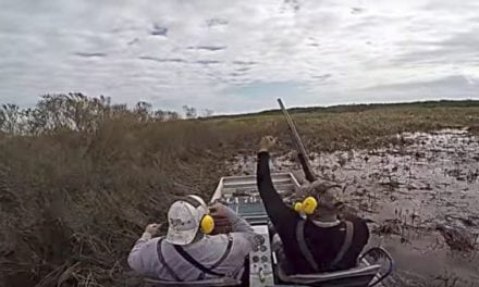 Video: Awesome Hog Hunting From an Airboat