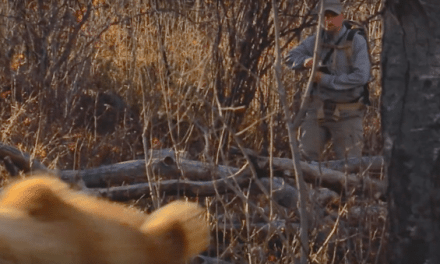 Video: How To Stay Safe Hunting In Bear Country by Wyoming Game and Fish