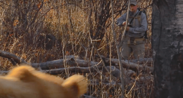 Video how to stay safe hunting in bear country by wyoming for Wy game and fish