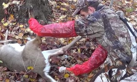 5 Disgustingly Awful Field Dressing and Skinning Fails