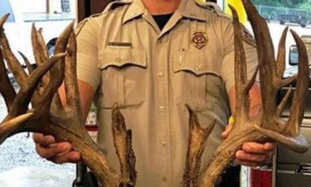 Absolute Trophy Buck Killed on the Highway in Oklahoma