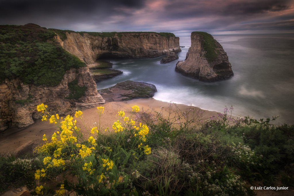 "Congratulations to Luiz Carlos Junior for winning the recent Beaches And Shorelines Assignment with the image, ""Spring at Shark Fin Cove."""