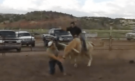 Bull Tramples Man Who Gets in His Way