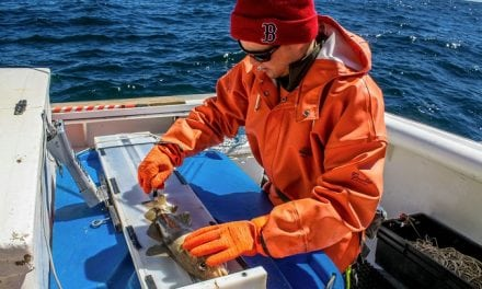 Fishing Industry, NEFSC Team Up for Gulf of Maine Commercial Longline Fishing Study