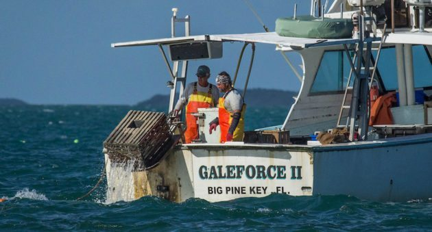 Florida eases regulations waives some fees for fishing for Wisconsin fishing license cost