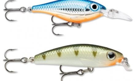 Go small for big success with ultra light lures